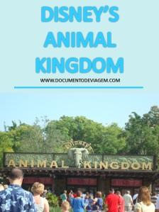 documento-de-viagem-disney-animal-kingdom-pinterest