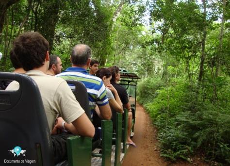 Parque Nacional do Iguaçu - Macuco Safári