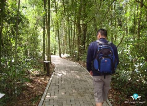 Trilha - Parques da Serra