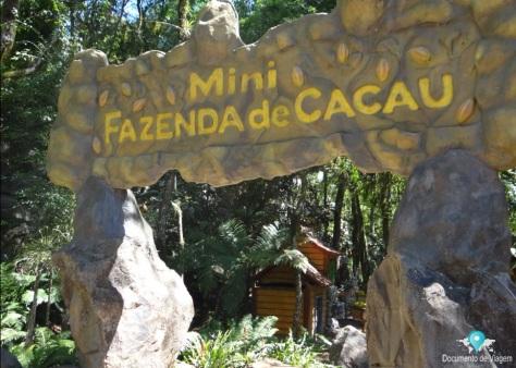 Mini fazenda de Cacau